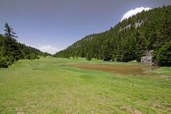 Prati della montagna Fotografia Stock