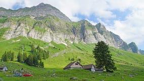 Prati della montagna nelle alpi Immagine Stock Libera da Diritti