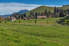 Prati e case verdi della montagna sopra il lago Lucerna, alpi, Svizzera Immagini Stock
