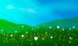 Prati, fiori e buttrflyes Fotografia Stock