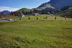 Prati stupefacenti di verde di vista sopra il lago Lucerna, alpi, Svizzera Immagini Stock