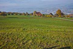 Prati verdi sopra il lago Lucerna Immagine Stock Libera da Diritti