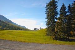 Prati verdi sopra il lago Lucerna, alpi, Svizzera Fotografia Stock