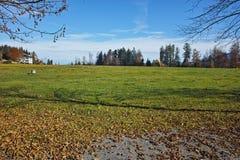 Prati verdi sopra il lago Lucerna, vicino al supporto Rigi, alpi Fotografia Stock