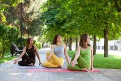 Pratica dell'yoga all'aperto fotografia stock