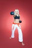 Pratica di Jiu-Jitsu Fotografie Stock