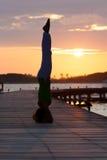 Pratica di yoga durante il tramonto Fotografie Stock
