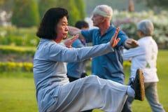 Pratica Tai Chi Chuan della gente in un parco Immagine Stock