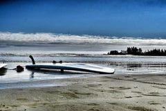 Praticando il surfing a Tofino, BC Immagini Stock