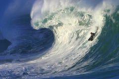 Praticando il surfing una grande onda alla baia di Waimea in Hawai Immagini Stock Libere da Diritti