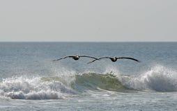Praticare il surfing dell'aria Immagine Stock