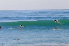 Praticare il surfing di estate dei rigonfiamenti Immagini Stock