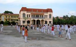 Praticiens d'arts martiaux image libre de droits