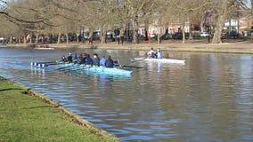 Pratique en matière d'aviron sur la rivière de Bedford, Royaume-Uni banque de vidéos