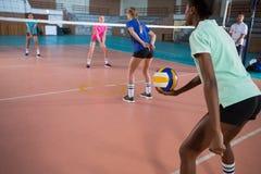 Pratique en matière de joueurs de volleyball Image stock