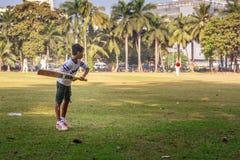 Pratique en matière nette de cricket Photo libre de droits