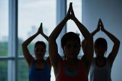 Pratitioners di yoga Fotografia Stock