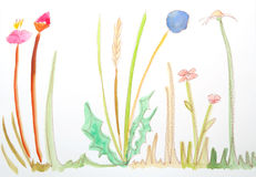 Prato. A field with flowers made with watercolors Royalty Free Stock Photos