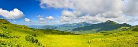 Prato alpino Fotografia Stock