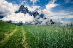 Prato alpino di estate Fotografia Stock Libera da Diritti