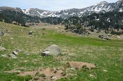 Prato alpino nella valle di Madriu-Perafita-Claror Fotografie Stock Libere da Diritti