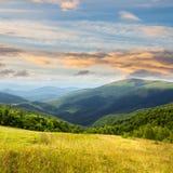 Prato in alte montagne ad alba Immagini Stock