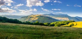 Prato in alte montagne ad alba Fotografie Stock