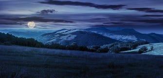 Prato in alte montagne alla notte Fotografia Stock