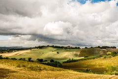 Prato asciutto di agricoltura nell'estate con il cielo nuvoloso Fotografia Stock