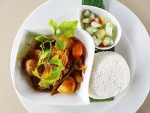 Prato asiático do caril com arroz branco fotos de stock