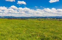 Prato bavarese Fotografia Stock Libera da Diritti