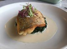 Prato clássico peixes em espinafres Badejo no molho de vinho foto de stock royalty free