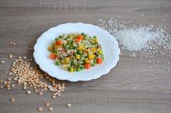 Prato com arroz e vegetais Imagem de Stock