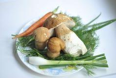 Prato com cogumelos e ervas e vegetais frescos fotos de stock royalty free