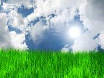 Prato con erba e cielo blu e nubi Fotografia Stock