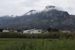 Prato con erba ed i fiori in parte posteriore della montagna e della priorità alta dentro Immagini Stock Libere da Diritti