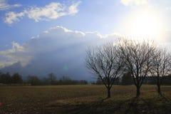 Prato con gli alberi con le nuvole di tempesta della riunione vicino a Sandweier Baden-Baden in foresta nera Immagini Stock Libere da Diritti