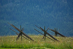 Prato con i pali Fotografie Stock