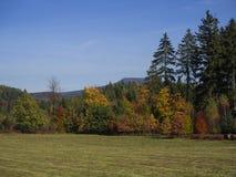 Prato con la foresta variopinta ed alberi di autunno e colline con lo sguardo Immagini Stock Libere da Diritti