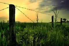 Prato con la rete fissa Fotografia Stock Libera da Diritti