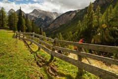 Prato con le montagne nei precedenti Fotografia Stock