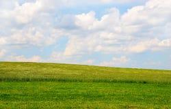 Prato con le nubi bianche su cielo blu Fotografie Stock Libere da Diritti