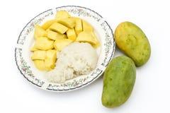Prato 2 da sobremesa da manga e do arroz pegajoso Fotos de Stock Royalty Free