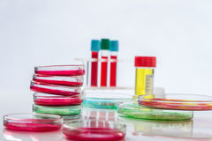 Prato de Petri, análise de sangue, tubo de ensaio, seringa Fotografia de Stock Royalty Free