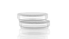 Prato de Petri com reflexão, ilustração stock