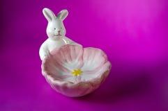 Prato de sabão cor-de-rosa w/Paths do coelho Fotos de Stock