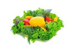 Prato de vegetariano Imagens de Stock Royalty Free