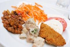 Prato de vegetariano Fotografia de Stock