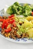 Prato de vegetariano Imagem de Stock Royalty Free