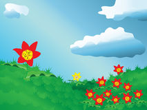 Prato dei tulipani Fotografie Stock Libere da Diritti